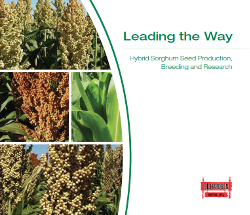 Click to download current Richardson Seeds Catalog