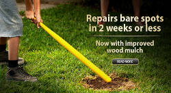 Repair bare lawn spots in two weeks or less with Pennington One-Step Complete