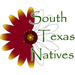 South Texas Natives
